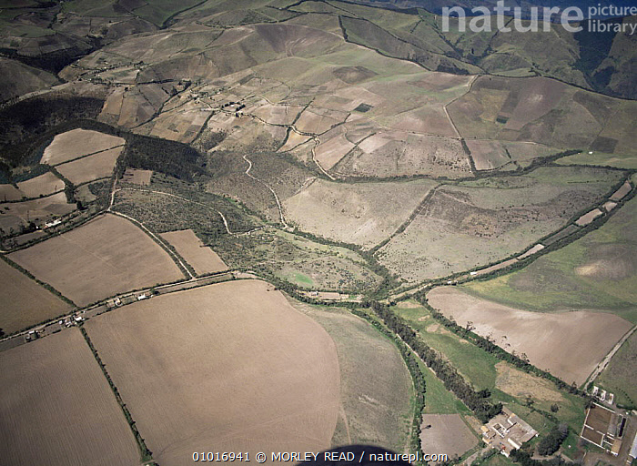 Aerial view of deforestation for agriculture, north of Quito, Ecuador  ,  AERIALS,AGRICULTURE,DEFORESTATION,LANDSCAPES,PATCHWORK,SOUTH AMERICA,TROPICAL RAINFOREST  ,  MORLEY READ