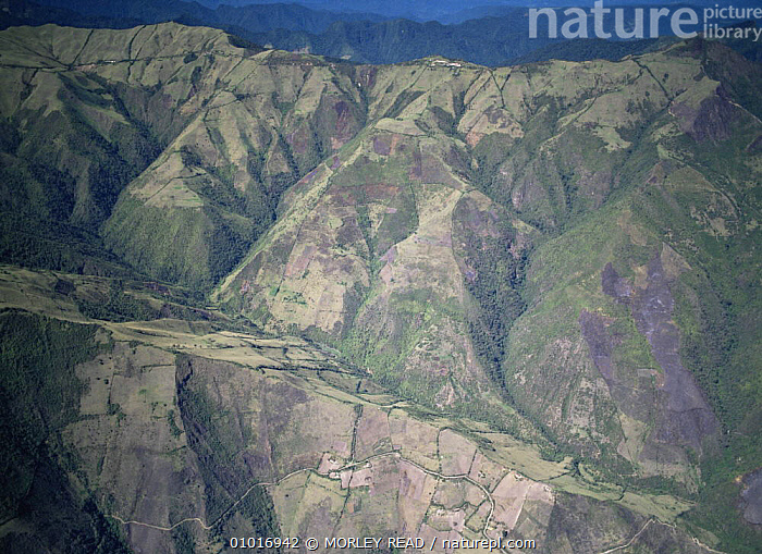 Deforested hillsides north of Quito, Ecuador  ,  DEFORESTATION,DESTRUCTION,HABITAT,SOUTH AMERICA,TROPICAL RAINFOREST  ,  MORLEY READ