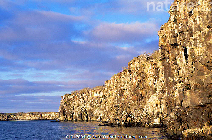 Cliff walls on Tower / Genoves Island, Galapagos Islands.  ,  CLIFFS,COASTS,GALAPAGOS,PACIFIC ISLANDS,ROCK FORMATIONS,SKY,SOUTH AMERICA,Geology,SOUTH-AMERICA  ,  Pete Oxford
