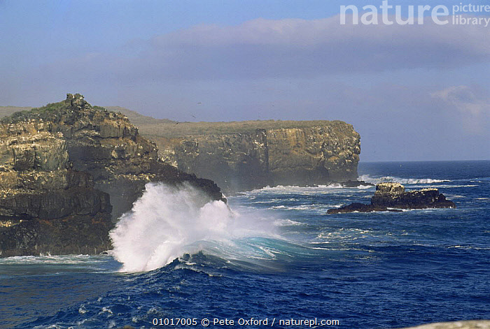 Wave crashing against Cliff face, Espanola / Hood Is. Galapagos Islands, 2005  ,  CLIFFS,COASTS,GALAPAGOS,LANDSCAPES,PACIFIC ISLANDS,ROCK FORMATIONS,SOUTH AMERICA,WAVES,Geology,SOUTH-AMERICA  ,  Pete Oxford