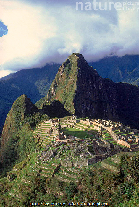 Machu Picchu (ancient Inca ruins) from the south with peak of Huayna Picchu in background. Peru, South America  ,  HUAYNA,MACHU,BUILDINGS,RUINS,ANCIENT,CULTURES,HOLIDAYS,ARCHAEOLOGY,INCA,MOUNTAINS,PICCHU,VERTICAL,CONCEPTS,SOUTH-AMERICA  ,  Pete Oxford