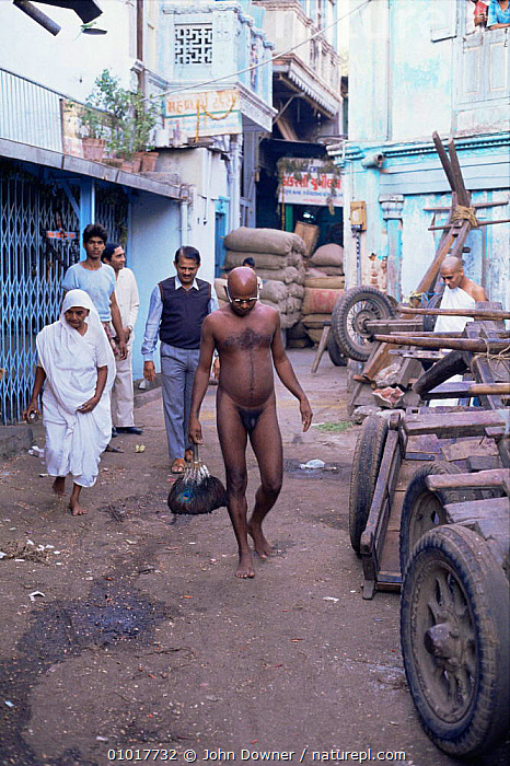 Jain Monk walking naked down the streets of Ahmedabad, Gujarat, India. These monks will kill no living thing, sometimes sweeping the ground infront of them to remove insects.  They live off donated food and drink.  ,  ASIA,BUILDINGS,CULTURES,INDIAN SUBCONTINENT,PEOPLE,Religion,religious,URBAN,VERTICAL,INDIAN-SUBCONTINENT  ,  John Downer