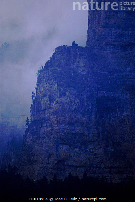 Anisclo canyon in mist. Ordesa NP, Pyrenees, Spain, Europe  ,  ANISCLO,CANYON,GEOLOGY,MIST,MOUNTAINS,NATIONAL PARK,NP,ORDESA,PYRENEES,ROCK FORMATIONS,VERTICAL,Europe  ,  Jose B. Ruiz