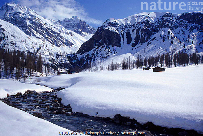 View into Sertig Valley in winter. Switzerland, Europe  ,  VALLEY,BUILDINGS,HOLIDAYS,WHITE,WOODLANDS,ATMOSPHERIC,SNOW,CONIFEROUS,TRADITIONAL,RIVERS,HORIZONTAL,MOUNTAINS,WINTER,ALPINE,SERTIG,CONCEPTS,EUROPE  ,  Christoph Becker