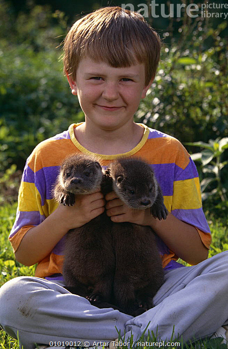 Boy with two Eurasian River otter cubs {Lutra lutra} Poland  ,  AFFECTIONATE,BABIES,CARNIVORES,CHILDREN,CUBS,CUTE,EUROPE,FRIENDSHIP,JUVENILE,MAMMALS,MUSTELIDS,OTTERS,PAIR,PEOPLE,POLAND,PORTRAITS,TWO,VERTEBRATES,VERTICAL,YOUNG,concepts  ,  Artur Tabor
