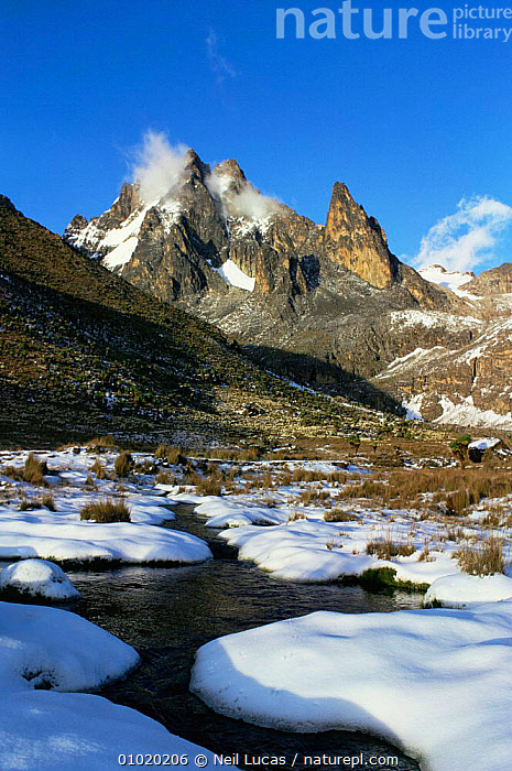 Mt / Mount Kenya in snow, Mackinders camp. Kenya, AFRICA,EAST AFRICA,HIGHLANDS,LANDSCAPES,MOUNTAINS,VERTICAL,EAST-AFRICA, Neil Lucas