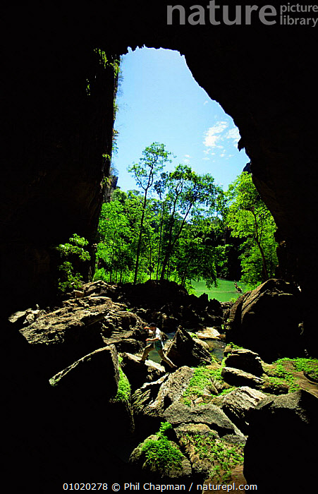 Looking out from a cave at the Green Lake. Ankarana NP, Madagascar  ,  AFRICA,CAVES,PEOPLE,RESERVE,SIZE,VERTICAL,MADAGASCAR  ,  Phil Chapman