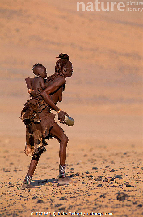 Himba woman carrying a baby on her back, collecting water, Kaokoland, Namibia.  1999., AFRICA,BABIES,DESERTS,FAMILIES,PEOPLE,SOUTHERN AFRICA,TRADITIONAL,TRIBES,VERTICAL, Pete Oxford