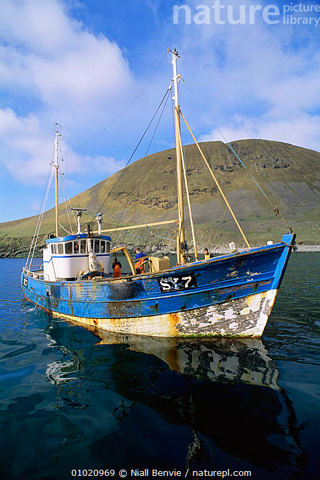 Fishing boat in bay. St Kilda, Scotland., COASTS,EUROPE,FISH,FISHERIES,PEOPLE,SCOTLAND,UK,United Kingdom,British, United Kingdom, United Kingdom , Outer Hebrides, Niall Benvie