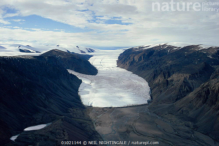 Aerial view of glacier at Sverdrup Pass, Ellesmere Island, Canadian Arctic. 1994., ADVANCING,AERIALS,ARCTIC,CANADA,FROZEN,GLACIAL FEATURES,GLACIERS,ICE,LANDSCAPES,NORTH AMERICA,RETREATING,TUNDRA,VALLEYS,Geology, NEIL NIGHTINGALE