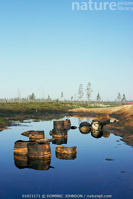 Oil barrels dumped in polluted lake, Siberia., ASIA,CIS,CRUDE OIL,LAKES,LANDSCAPES,OIL,POLLUTION,PONDS,REFUSE,rubbish,RUSSIA,VERTICAL,WETLANDS, DOMINIC JOHNSON
