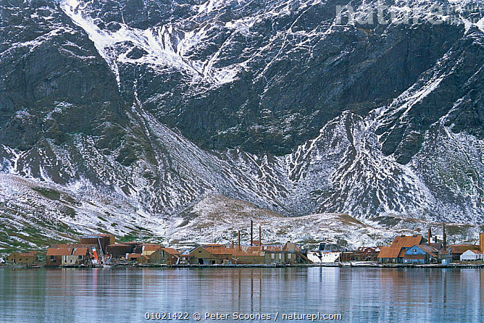 Abandonned whaling station at Grytviken, South Georgia, South Atlantic, ANTARCTICA,BUILDINGS,COASTS,HUNTING FOOD,INDUSTRY,LANDSCAPES,MARINE,MOUNTAINS,POLAR,sea,SNOW,south atlantic islands,WHALING,USA,FALKLAND ISLANDS,North America, PETER SCOONES