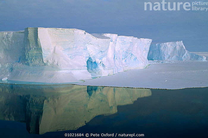 Tabular Iceberg with a cave in Weddell Sea, Antarctica., ANTARCTICA,ARTY SHOTS,ATMOSPHERIC,COASTS,DRAMATIC,HOLIDAYS,ICE,ICEBERGS,OUTSTANDING,PEACEFUL,POLAR,REFLECTIONS,THE SEA,Concepts, Pete Oxford