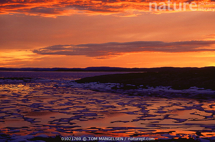 Reflected sunset on sea ice, Wager Bay, NW Territories, Canada, ARCTIC,CANADA,COLOURFUL,ICE,LANDSCAPES,REFLECTIONS,SKIES,SUNSET,North America, TOM MANGELSEN