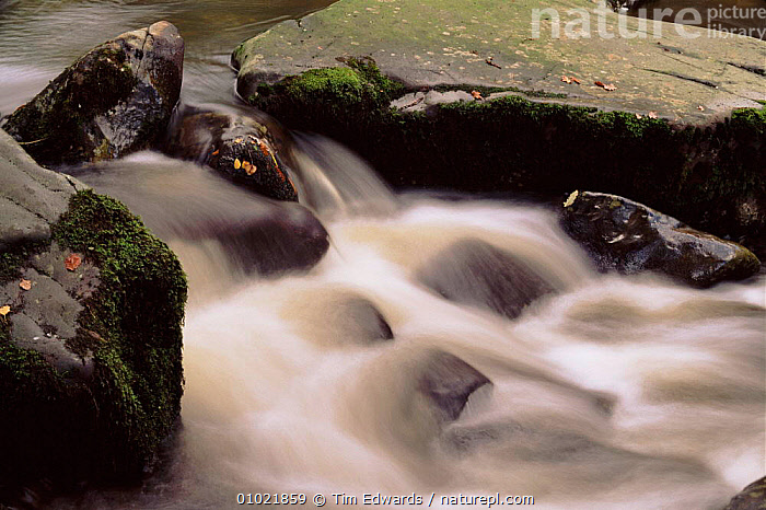 Southern Snowdonia NP, the river Mawddach in October, Wales., ARTY SHOTS,ATMOSPHERIC,AUTUMN,BRITISH,CONCEPTS,EUROPE,HORIZONTAL,MAWDDACH,NATIONAL PARK,NP,OUTSTANDING,PEACEFUL,RIVERS,ROCKS,SNOWDONIA,TE,UK,UNITED KINGDOM,WATER,WHITE,WALES, Tim Edwards