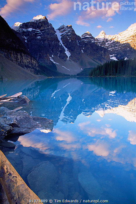Calm reflections in Banff National Lake, Banff NP, Rocky Mountains, Canada, Calm,CANADA,HIGHLANDS,MOUNTAINS,NORTH AMERICA,REFLECTIONS,VERTICAL , LANDSCAPES,,Canadian Rocky Mountain Parks World Heritage Site, UNESCO World Heritage Site,Rocky Mountains,Rockies,NP,Reserve,, Tim Edwards