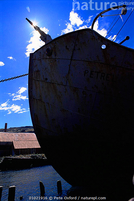 Old whaling boat at abandonned station, Grytviken, South Georgia, ANTARCTICA,BOATS,HUNTING FOOD,INDUSTRY,MACHINERY,OLD,POLAR,south atlantic islands,VERTICAL,WHALING,USA,FALKLAND ISLANDS,North America, Pete Oxford