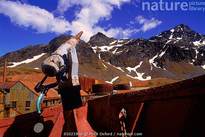Old whaling boat at abandoned station, Grytviken.South Georgia Antarctic, ANTARCTIC,BOAT,BOATS,GRYTVIKENSOUTH,HORIZONTAL,HUNTING FOOD,INDUSTRY,MACHINERY,PO,STATION,SUB ANTARCTIC,WHALING,USA,North America, Pete Oxford