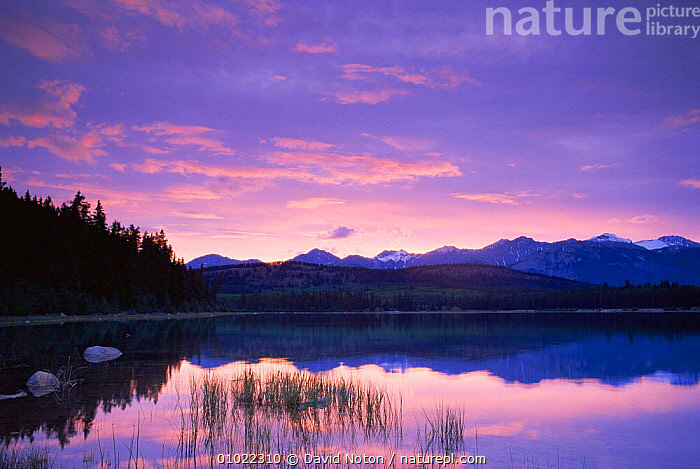 Dawn over Patricia Lake, Jasper NP, Alberta, Canada, Calm,CANADA,DAWN,LAKES,LANDSCAPES,NORTH AMERICA,PEACEFUL,rockies,Rocky,SKY,SUNRISE,Concepts,,Canadian Rocky Mountain Parks World Heritage Site, UNESCO World Heritage Site,Rocky Mountains,Rockies,NP,Reserve,, David Noton