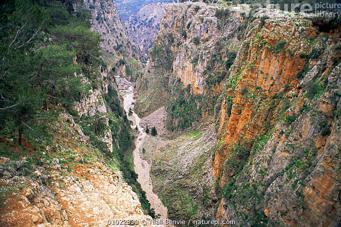 Looking down into Aradena gorge, Aradena, Crete April 1996, CLIFFS,EUROPE,gorges,GREECE,LANDSCAPES,MEDITERRANEAN,ROCK FORMATIONS,ROCKS,Geology, Niall Benvie