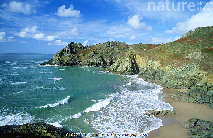 Elender Cove and Gammon Head, near Salcombe, Devon, England., BEACHES,CLIFFS,COASTS,HOLIDAYS,LANDSCAPES,ROCK FORMATIONS,SEA,WAVES,Concepts,Geology,ENGLAND,Europe, David Noton