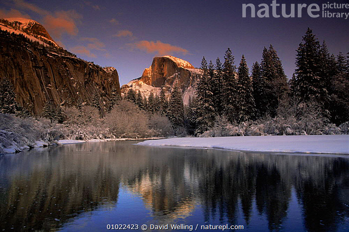 Winter landscape with Half Dome mountain face, Yosemite NP, California, USA, ICE,landmark,LANDSCAPES,MOUNTAINS,NORTH AMERICA,NP,RESERVE,RIVERS,SNOW,TREES,USA,WATER,WINTER,Plants,National Park, David Welling