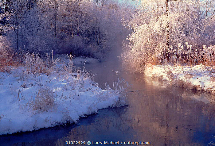 Stream in winter, Wisconsin, USA, AMERICA,LM,WHITE,SNOW,HORIZONTAL,,RIVERS,LANDSCAPES,WINTER,STREAM,ATMOSPHERIC,FROST,WEATHER,North America,USA, Larry Michael