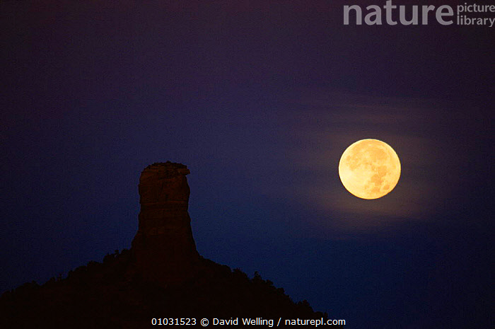 Full moon setting over Chimney Rock, Sedona, Arizona, USA, DESERTS,MOON,NIGHT,NORTH AMERICA,ROCK FORMATIONS,USA,Geology, David Welling