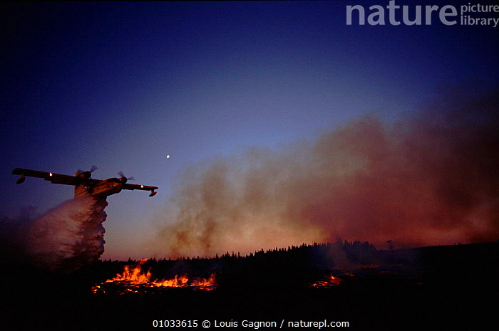 Firefighting plane releasing water collected from the ocean to extinguish forest fire, Gulf of St Lawrence, Canada., AEROPLANE,AIRCRAFT,DRAMATIC,FIRE,FIREFIGHTING,FOREST,FORESTRY,GULF,HORIZONTAL,LG,NIGHT,NORTH AMERICA,WATER,CANADA, Louis Gagnon