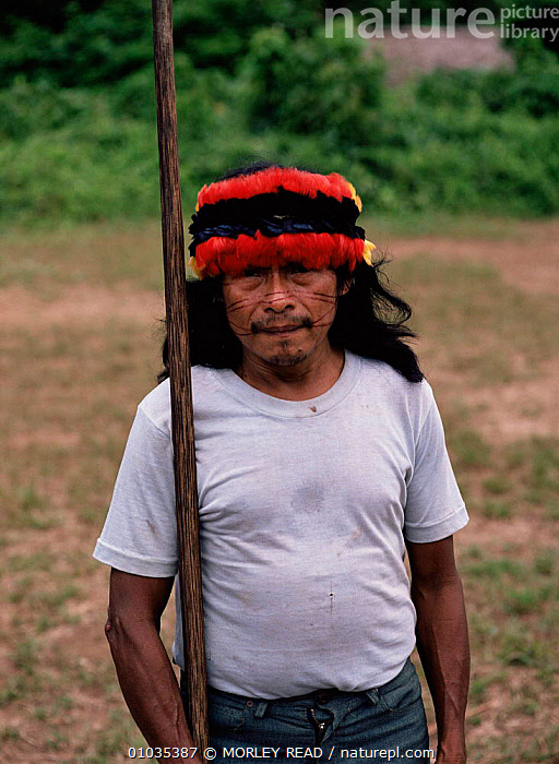 Achuar Indian man with macaw feather headress, Amazon Ecuador  ,  BIRDS,CULTURES,FEATHERS,MACAWS,PARROTS,PEOPLE,PORTRAITS,SOUTH AMERICA,TRADITIONAL,TRIBES,VERTEBRATES,VERTICAL  ,  MORLEY READ