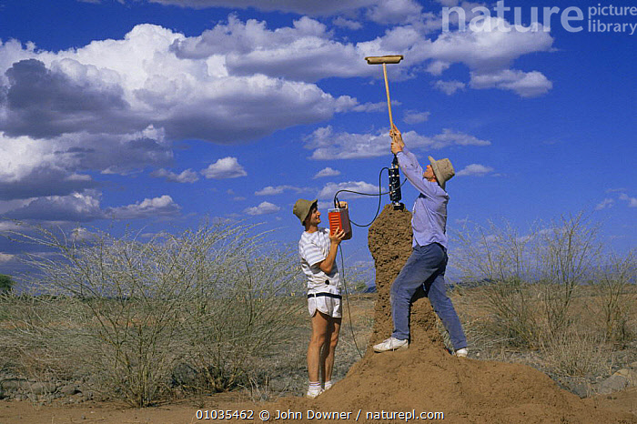Alan Hayward filming in termite chimney with improvised broom cam mount, Kenya, 1990s  ,  ARTHROPODS,DESERTS,EAST AFRICA,FILMING,NHU,PEOPLE,Africa  ,  John Downer