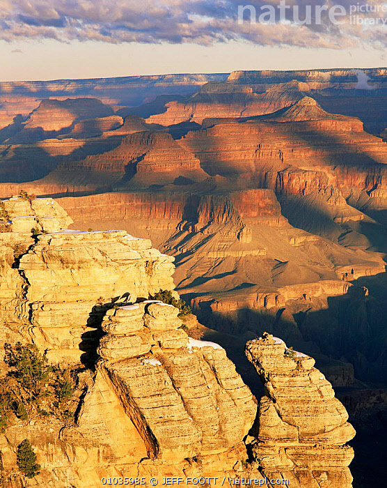 Grand Canyon National Park, winter sunrise. Arizona, USA.  ,  DESERTS,NORTH AMERICA,NP,ROCK FORMATIONS,SUNRISE,USA,WINTER,North America,National Park,Geology  ,  JEFF FOOTT