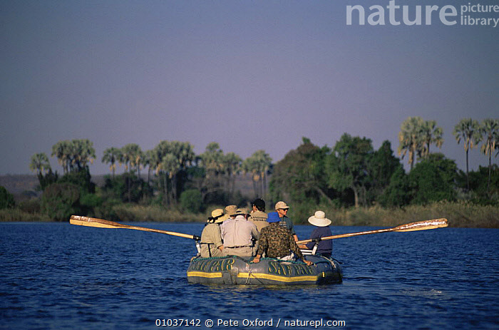 Game viewing on the Zambezi river, Zimbabwe, Africa  ,  AFRICA,BOATS,HOLIDAYS,LEISURE,RIVERS,SOUTHERN AFRICA,TOURISM,Concepts  ,  Pete Oxford