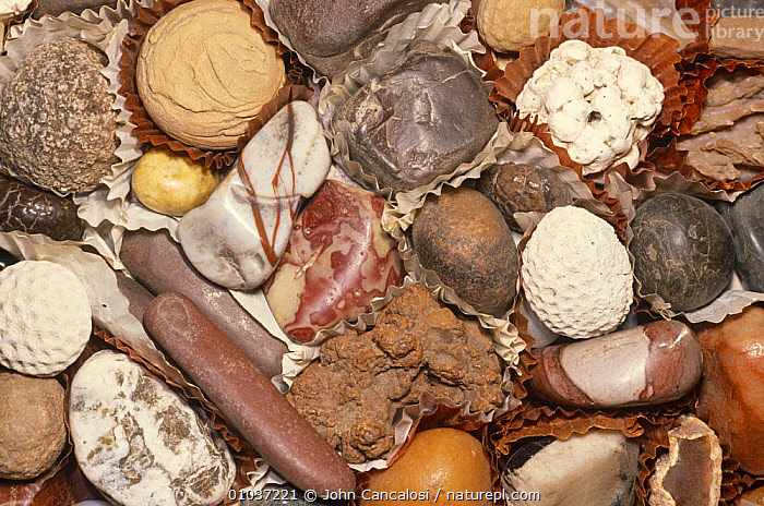 Rocks and minerals looking like assorted candies, Banquet of Rocks collection, USA  ,  COLLECTION,MINERALS,NORTH AMERICA,PEOPLE,ROCKS,USA,WEIRD  ,  John Cancalosi