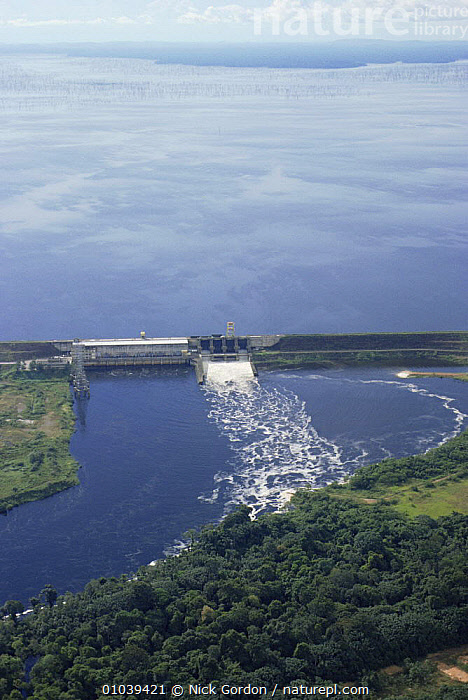 Aerial view of Balbina Hydroelectric dam near Manaus, Brazil. It flooded 2400 sq km of rainforest when the dam was opened in 1982.  ,  AERIALS,CONSTRUCTION,DAMS,ENERGY,FLOODING,FRESHWATER,INDUSTRY,LAKES,LANDSCAPES,MANMADE,RIVERS,SOUTH AMERICA,TROPICAL RAINFOREST,VERTICAL,SOUTH-AMERICA  ,  Nick Gordon