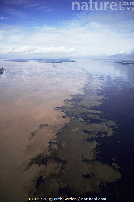 Aerial view of the meeting of waters from Rio Solimoes and Rio Negro (black waters on right), to form the mighty Amazon river, near Manaus, Brazil.  Waters do not mix for several miles as the sediment load takes time to settle.  ,  AERIALS,AMAZON,FRESHWATER,INTERESTING,LANDSCAPES,RIVERS,SEDIMENT,SOUTH AMERICA,TRIBUTARIES,TROPICAL,VERTICAL,WATER,SOUTH-AMERICA  ,  Nick Gordon