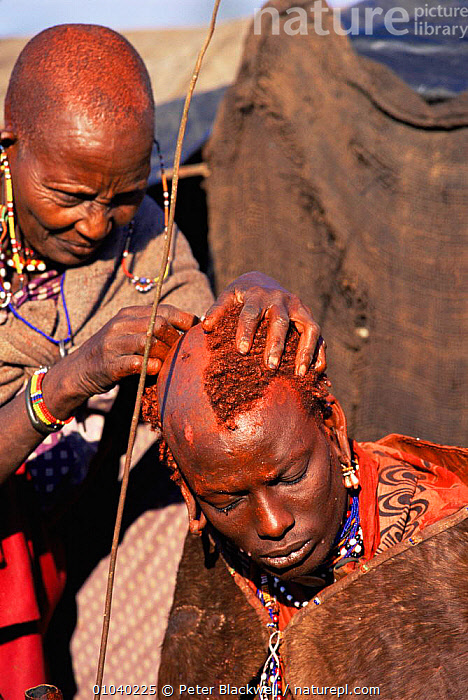 Maasai warrior has head shaved by mother during Eunoto ceremony Ritual, Mara region, Kenya  ,  AFRICA,EAST AFRICA,INTERESTING,MAN,PEOPLE,TRADITIONAL,TRIBES,VERTICAL,WOMAN,EAST-AFRICA  ,  Peter Blackwell