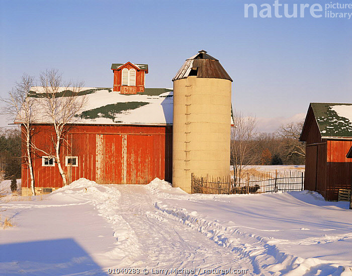 Farm buildings in winter snow, Wisconsin, USA  ,  AGRICULTURE,BUILDINGS,FARMLAND,FARMS,NORTH AMERICA,SNOW,TRADITIONAL,USA,WINTER  ,  Larry Michael