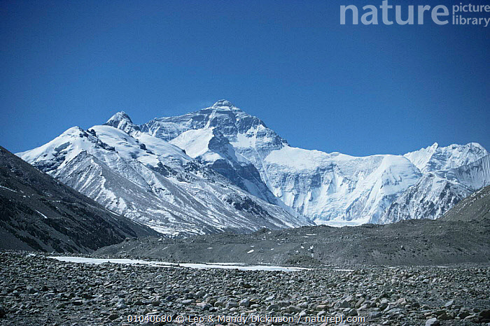 North face of Everest with Rongbuk glacier in foreground, Tibet.  ,  ASIA,CHINA,himalayas,LANDSCAPES,MOUNTAINS,ROCKS,Rocky  ,  Leo & Mandy Dickinson