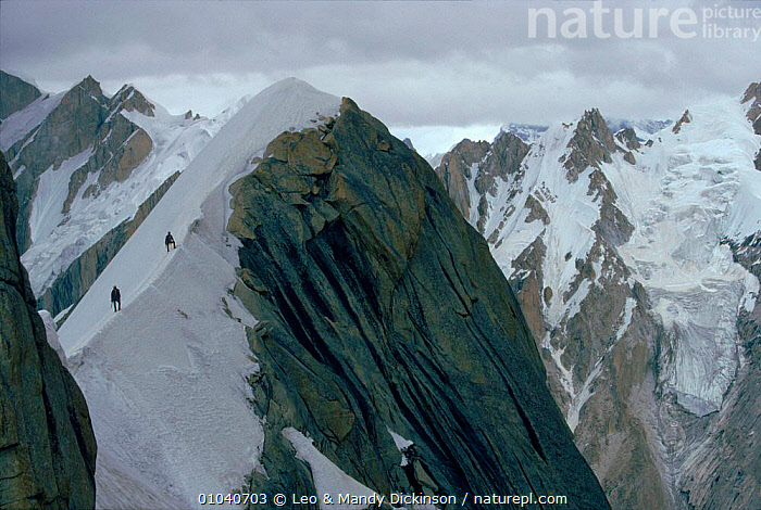 Climbers nearing summit, Great Trango, Pakistan  ,  CLIMBERS,HORIZONTAL,MOUNTAINS,ALPINE,GREAT,MOUNTAINEERING,TRANGO,PEOPLE,SUMMIT,PLANTS,Asia,INDIAN-SUBCONTINENT  ,  Leo & Mandy Dickinson