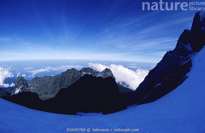 View from Stanley Glacier, Mountains of the Moon,  Ruwenzori, Virunga NP, Congo (formerly Zaire)  ,  AFRICA,CENTRAL AFRICA,HIGHLANDS,LANDSCAPES,MOON,MOUNTAINS,NP,PLANTS,SNOW,National Park , Bruce Davidson  ,  Jabruson