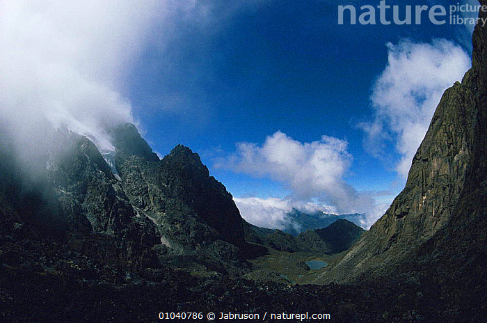 View from Moraine Hut onto Lac Gris, Ruwenzori Mountains, Mountains of the moon, Virunga NP, Democratic Republic of Congo (formerly Zaire)  ,  AFRICA,CENTRAL AFRICA,CLOUDS,HIGHLANDS,LAKES,LANDSCAPES,MOUNTAINS,PLANTS,VOLCANIC,VOLCANOES,Weather,Geology , Bruce Davidson  ,  Jabruson