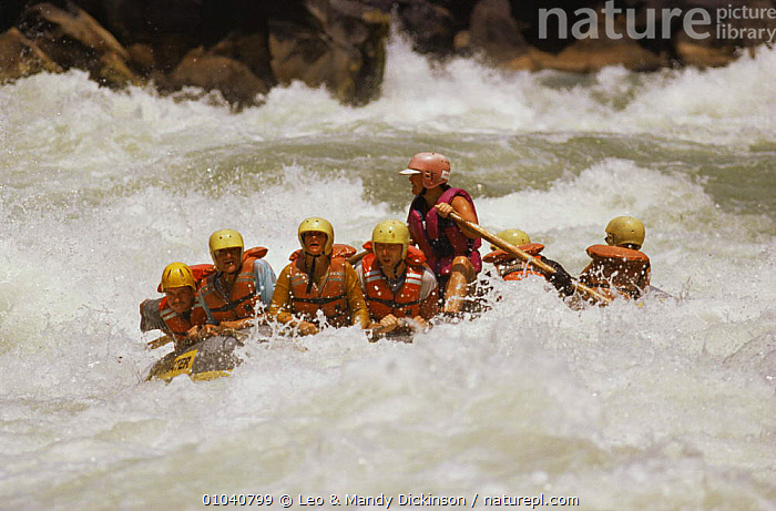 White water rafting on the Zambesi River, Zimbabwe  ,  LEISURE,PEOPLE,RIVERS,SOUTHERN AFRICA,WATER,WATER PURSUITS  ,  Leo & Mandy Dickinson