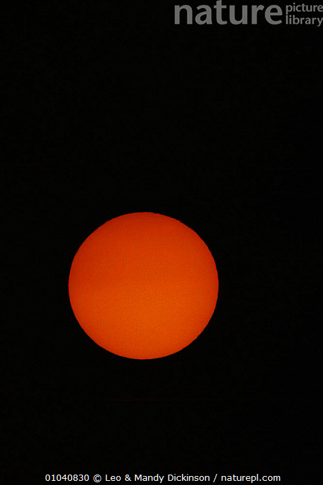 Close-up of the Sun  ,  ORANGE,STARS,LDI,VERTICAL  ,  Leo & Mandy Dickinson