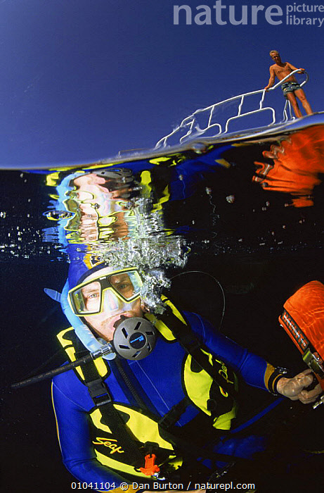 Diver underwater just below surface,  split level  with person standing on boat deck, Egypt  ,  DIVING,LEISURE,RED SEA,SPLIT LEVEL,VERTICAL,WATER PURSUITS,WATER PURSUITS,Marine,NORTH-AFRICA,Africa  ,  Dan Burton
