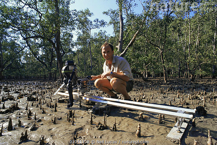Cameraman Martyn Colbeck filming mangrove roots with camera and periscope mounted on track, for a Natural World programme on Borneo, 1997  ,  FILMING,MANGROVE,NHU,PEOPLE,SOUTH EAST ASIA,Asia,mangroves  ,  Neil Lucas