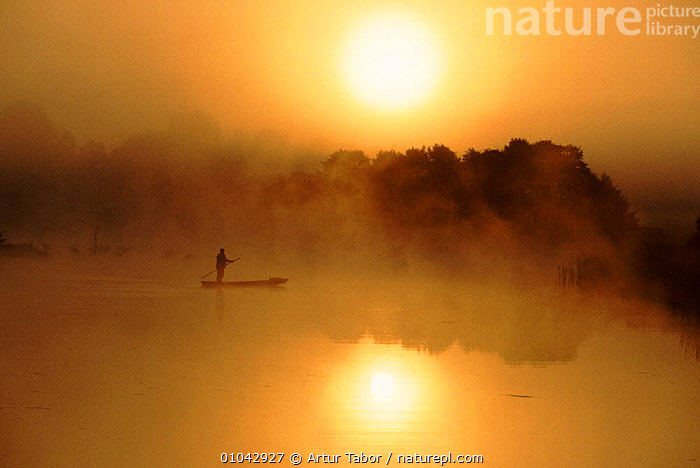Fisherman at dawn on River Bug, East Poland, Europe  ,  MIST,RIVERS,SUN,DAWN,FISHERMAN,FISHERIES,RIVER,SUNRISE,PEOPLE,TRADITIONAL,BUG,PEACEFUL,HORIZONTAL,ATMOSPHERIC,BOATS,CONCEPTS,Europe,WEATHER  ,  Artur Tabor