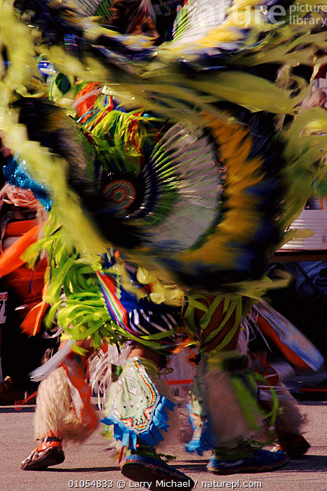Native American in feather costume at Pow Wow dance. Wisconsin, USA  ,  AMERICAN,ARTIFACTS,COSTUME,CULTURES,DANCE,FEATHER,INDIAN,LM,MICHAEL,NORTH AMERICA,PEOPLE,POW,TRADITIONAL,VERTICAL,WOW,USA  ,  Larry Michael