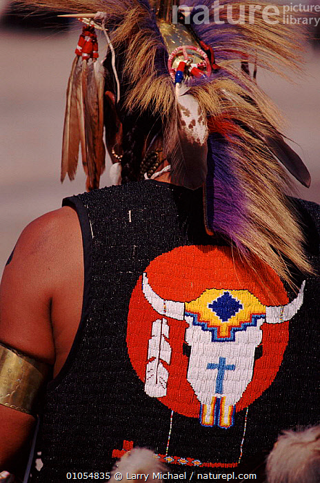 Back view of Native American in feather costume at Pow Wow dance. Wisconsin, USA  ,  AMERICAN,ARTIFACTS,COSTUME,CULTURES,DANCE,FEATHER,INDIAN,LAWRENCE,LM,MICHAEL,NATIVE,NORTH AMERICA,PEOPLE,POW,TRADITIONAL,VERTICAL,WOW,USA  ,  Larry Michael