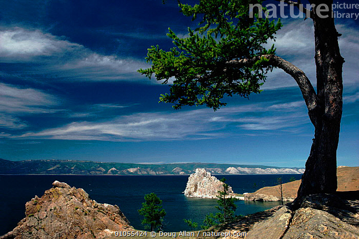 Cape Burchan, Lake Baikal, Russia.  ,  LAKE,WATER,BAYKAL,HORIZONTAL,DA,TREES,BURCHAN,ALLAN,CAPE,SEA,BAIKAL,LAKES,PLANTS,CIS  ,  Doug Allan